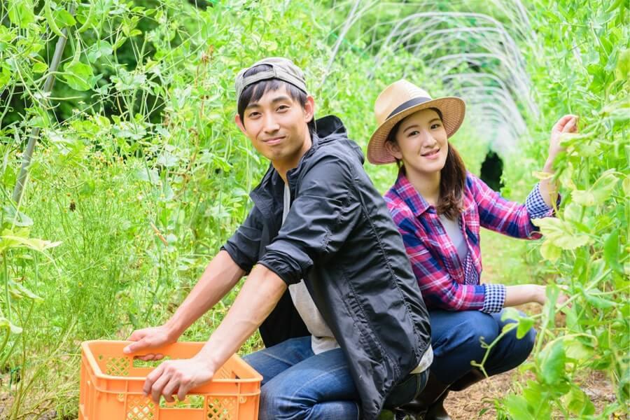 農業をしている夫婦